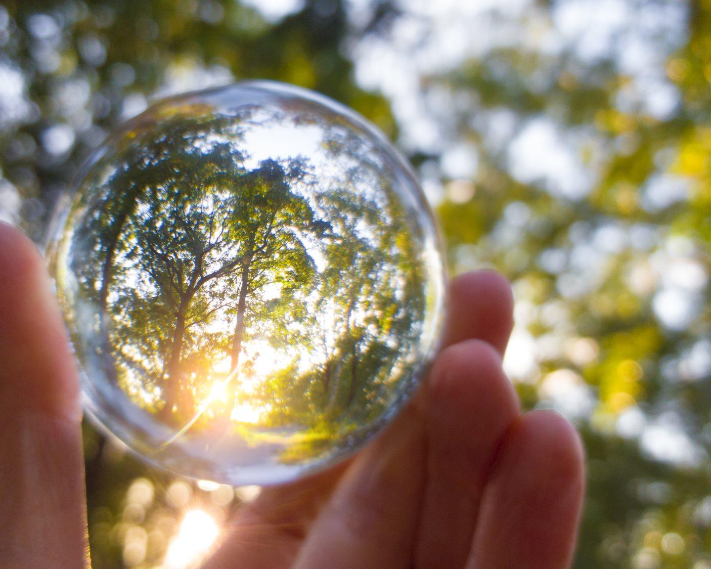 Sustainability2.jpg