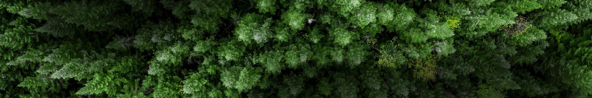 Sustainability-Dunkler.psd